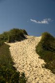 Footpath Over The Dune