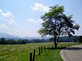 picture of cade  - View of the valley in Cades Cove located in the beautiful Great Smoky Mountains - JPG