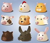 Cartoon illustrations of farm animals and pets: pig, chicken, cat, cow, dog, sheep, horse, donkey, b