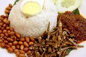 foto of nasi  - Nasi lemak traditional malaysian spicy rice dish - JPG