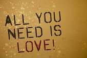 Word Writing Text All You Need Is Love Motivational. Business Concept For Deep Affection Needs Appre poster