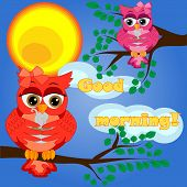 An Sleepy Owl On A Tree Branch In The Morning, The Sun Shines And Smiles. Inscription Good Morning.  poster
