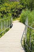 Wooden Walking Path