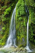 Salmon Creek Falls, Oregon