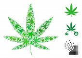 Cannabis Collage Of Weed Leaves In Various Sizes And Color Tinges. Vector Flat Weed Icons Are United poster