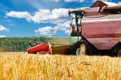 Close-up Harvester Machine Working In Field. Agriculture Machine Harvesting Golden Ripe Wheat In Fie poster