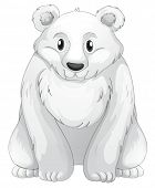 Ilustración del oso polar sobre un fondo blanco