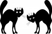 stock photo of black cat  - Two black cats - JPG