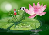 picture of glass frog  - Illustration of a frog above the waterlily - JPG