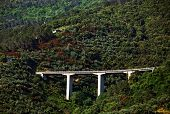 Motorway bridge on the Ligurian Coast, Italy, Europe
