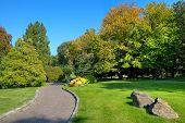 Pasillo estrecho entre verdes prados y árboles bajo el cielo azul en el botánico parte del famoso Valentin