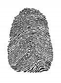 People fingerprint