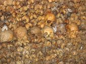 Skulls In Catacombs
