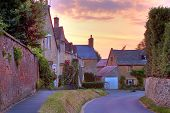 stock photo of hollyhock  - Cotswold cottages with hollyhocks and roses at sunset - JPG