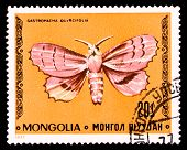 Mongolia Stamp With Butterfly