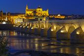 Old Roman Bridge And Tower Calahora At Night, Cordoba
