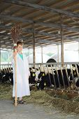 Boy in white robe with broom stands near stall with calves in large farm.