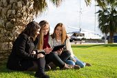 stock photo of wench  - Young female students consulted on a tablet - JPG