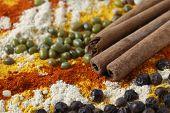 Side view showing cinnamon sticks, black pepper, mung beans, fenugreek, chilli and turmeric powders