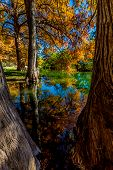 picture of guadalupe  - Beautiful Reflections of Fall Foliage On The Guadalupe River - JPG