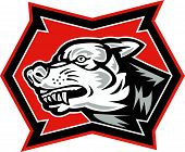 Angry Wolf Wild Dog Retro