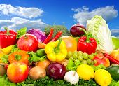picture of supermarket  - Various fruits and vegetables - JPG