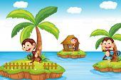 Illustration of monkeys at the beach