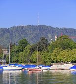 Lake Zurich And Mt. Uetliberg