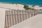 picture of tarifa  - Wooden fences on deserted beach dunes in Tarifa Spain - JPG