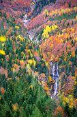 Autumn Bujaruelo Ordesa waterfal in colorful fall forest Pyrenees Aragon Huesca Spain
