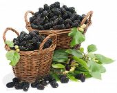 Black Mulberries On Baskets With Leaves
