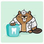 beaver dentist