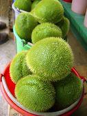 Mango Squash Chayote Vegetable Pear Merliton