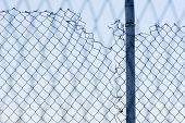 Torn Metal Wire Fence