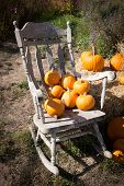 Pumpkin Patch And Rocking Chair