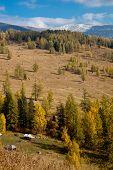 View Of Mount Altai Sarlyks
