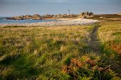 ushant island coastline landscape at the Pern point with the Creach lighthouse, Brittany, France