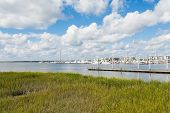 Yachts And Pier Past Green Wetland Marsh