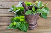 fresh nettle leaves with a mortar on a wooden background