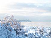 View of icy ocean