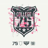College Sport Emblem And Design Elements