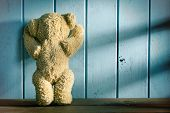 picture of teddy  - the teddy bear stands in front of a blue wall - JPG