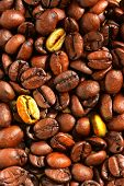 pic of unicity  - Golden coffee beans in the middle of ordinaries beans - JPG