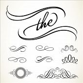 picture of cursive  - Set of vector swirl ornaments - JPG
