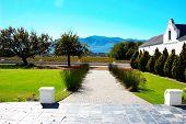 Vineyard On Pleisir De Merle Wine Farm In Autumn