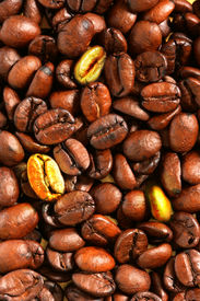 stock photo of unicity  - Golden coffee beans in the middle of ordinaries beans - JPG