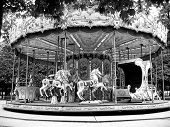 Black and White Carousel  in park