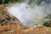 Steam From The Kilauea Volcano