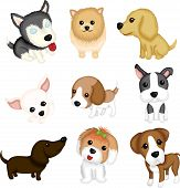 stock photo of foxhound  - A vector illustration of different dog breeds - JPG