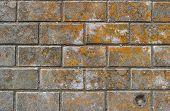 Постер, плакат: Pavement Sidewalk Tiles Background Pavement Tiles Top View Closeup Footpath Sidewalk Dirty Pa